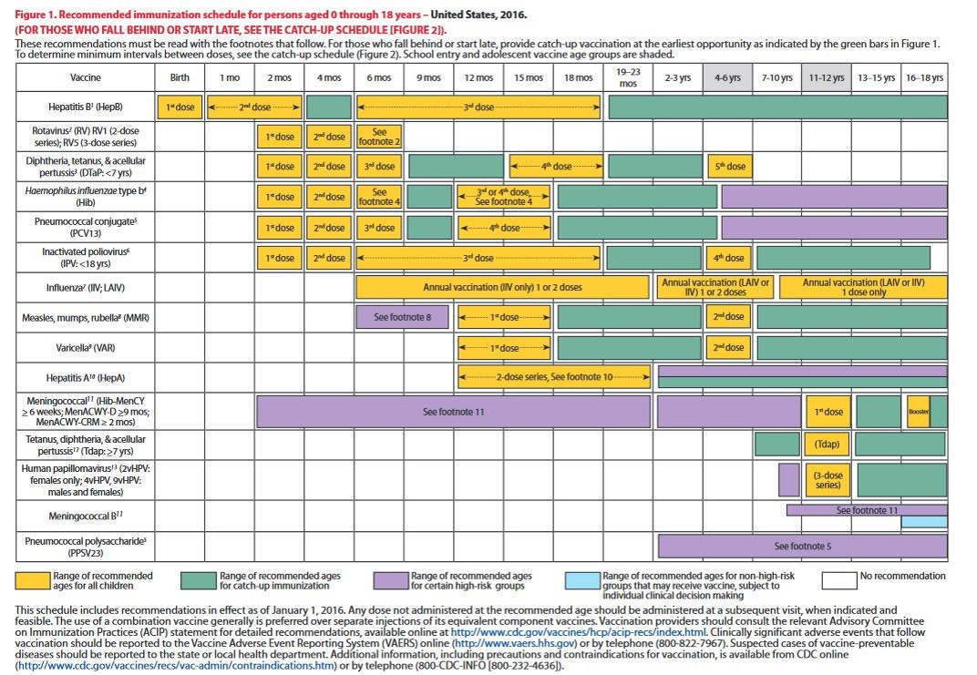 Cdc Pediatric Vaccine Schedule Examples And Forms