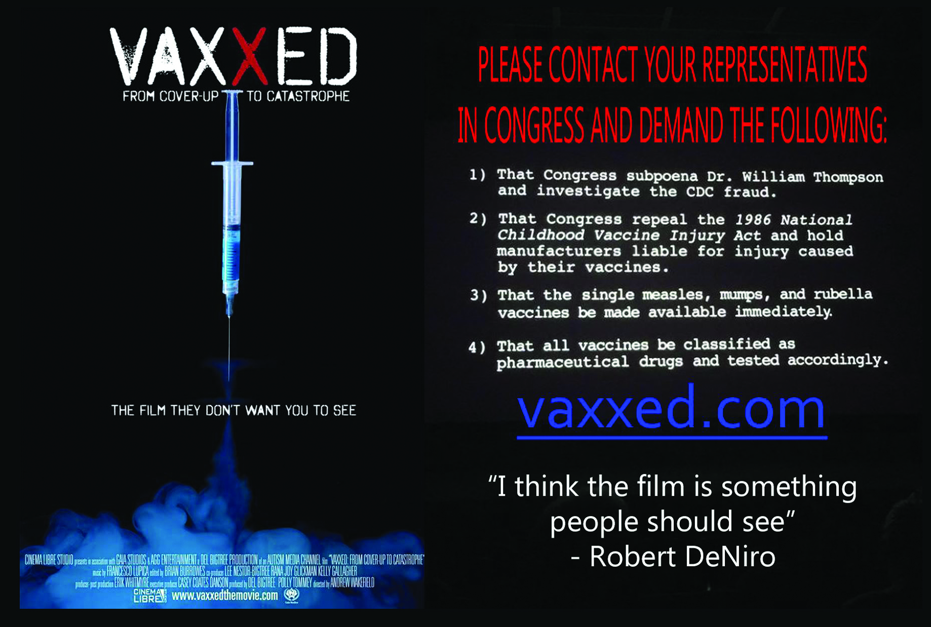 """Are Vaccines Safe? 4""""x6"""" FRONT"""
